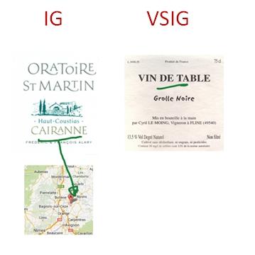 Phân loại rượu nhóm IG và VSIG