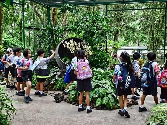 Vườn Thực vật Singapore – mở cửa tự do – thực sự đáng ngạc nhiên. Người Singapore thường đến đây đi picnic và thư giãn trong những ngày cuối tuần.