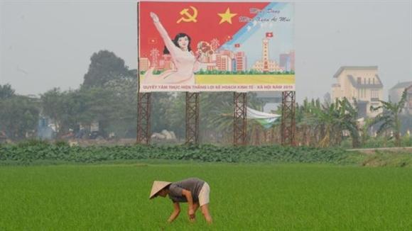 Lieu Viet Nam co tro thanh mot Thung lung Silicon moi?