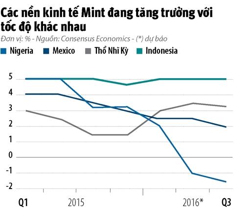 Infographic: Khoi Mint co con hap dan?