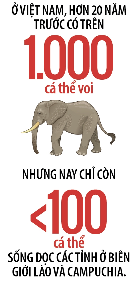 Viet Nam: Diem nong tren ban do nga voi