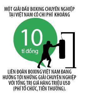 Boxing Viet Nam: Dau truong lang song
