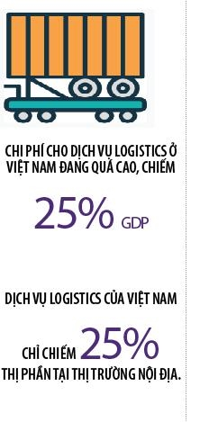 Logistics Viet: Gianh giat hay cho hoach dinh?