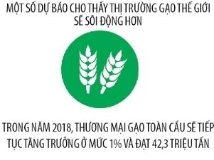 Du bao thi truong xuat khau gao Viet Nam nam 2018