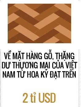 Xuat khau do go vao thi truong My: Moi lo tu Trung Quoc