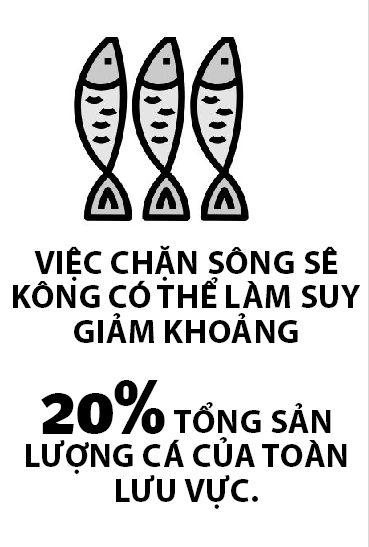Dap Se Kong 1 de doa Dong bang Song Cuu Long