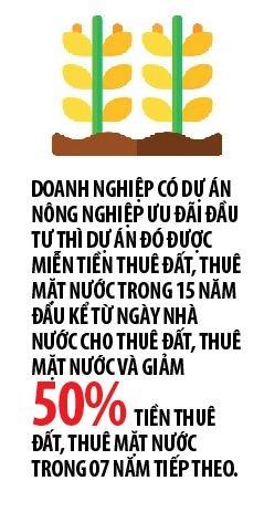 Chinh phu uu tien doanh nghiep dau tu vao nong nghiep