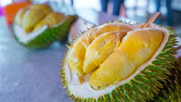 Thai Lan dua sau rieng len vu tru