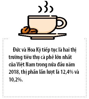 Ca phe Viet huong toi muc tieu 6 ty USD