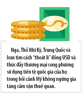 Vung Vinh se co dong tien thay the USD?