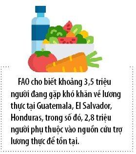 El Nino de doa nghiem trong an ninh luong thuc o Trung My