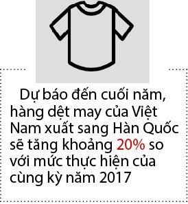 Han Quoc: Thi truong but pha cua det may Viet Nam