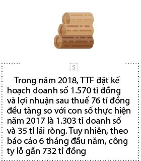 Go Truong Thanh hop bat thuong ve phuong an M&A