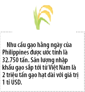 Vinafood 2 co hop dong 1 ty USD phan phoi gao cho Philippines