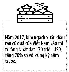 Trai cay Viet rong cua di Nhat