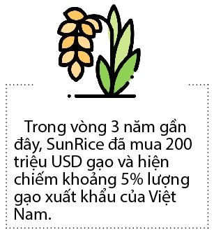 Gao Viet thu hut doanh nghiep ngoai