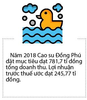 Vuot ke hoach, Cao su Dong Phu tam ung co tuc 40%