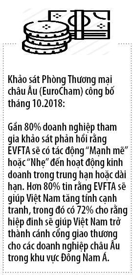 Siet chat hon cac quy dinh ve hang hoa chat Viet Nam vao EU