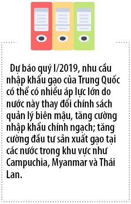 Trung Quoc doi chinh sach: Xuat khau rau qua, gao, thit heo se kho