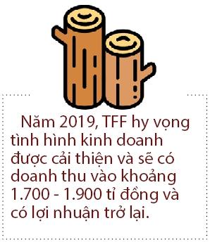 Go Truong Thanh lai bao lo