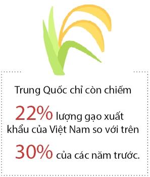 Gao Viet gap kho tai Trung Quoc