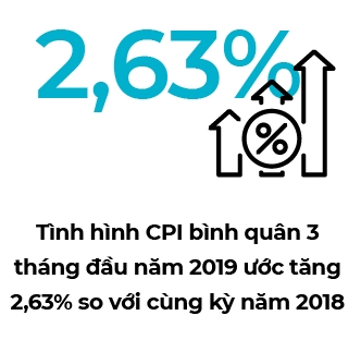 CPI 2019 co the o muc 3,3% - 3,9%