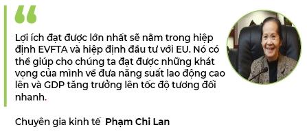 Tac dong cua EVFTA duoi goc nhin cua chuyen gia kinh te Pham Chi Lan