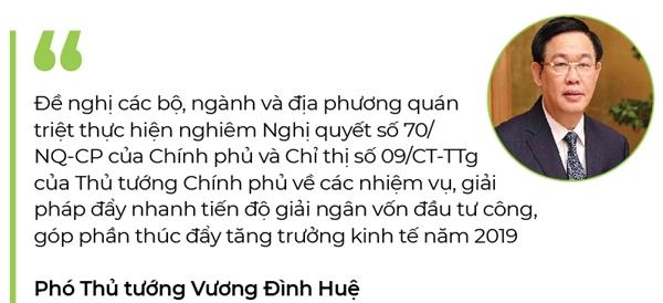 Vien canh giai ngan bat kip tien do trien khai Luat Dau tu cong 2019