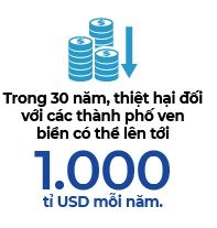 Ngay the gioi khong con bai bien