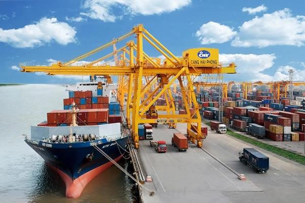 Hệ thống cảng biển ở Việt Nam chưa đủ để đáp ứng nhu cầu vận chuyển hàng hóa. Ảnh: tedi.vn