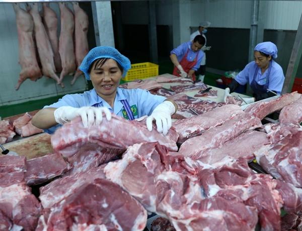 Thiếu hụt và tăng giá thịt lợn là điều khó tránh khỏi sau khi dịch tả lợn châu Phi đã lan rộng trên 63 tỉnh, thành. 4,7 triệu con lợn buộc phải tiêu hủy.Nguồn ảnh: vietnamplus