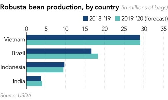 Hiện Việt nam là nước có sản lượng cà phê Robusta lớn nhất thế giới. Ảnh://asia.nikkei.com