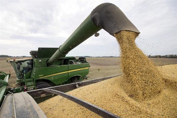 Trung Quốc cho biết sẽ mua thêm nông sản Mỹ, tuy nhiên không xác nhận giá trị đơn hàng. Ảnh: AP