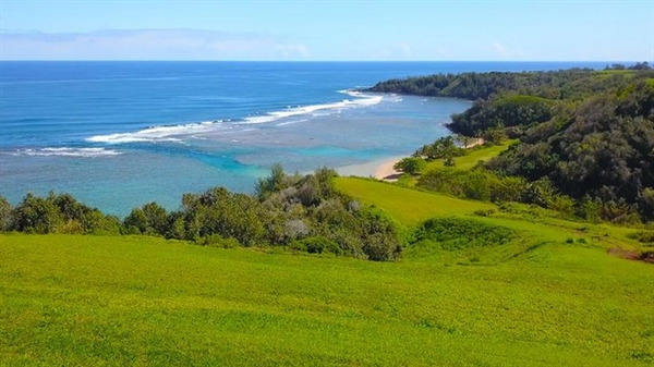 Năm 2017, vị tỷ phú công nghệ này mua thêm 36 ha đất ở quần đảo Hawaii với giá hơn 45 triệu USD. Ảnh: Trulia.