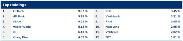 Tỷ trọng danh mục cổ phiếu của quỹ PYN cuối tháng 12/2019