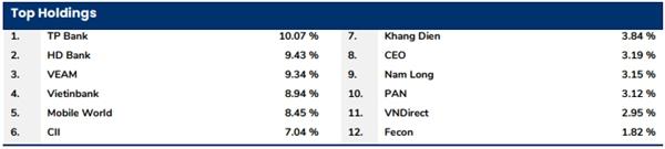 Tỷ trọng danh mục cổ phiếu của quỹ PYN cuối tháng 1/2020