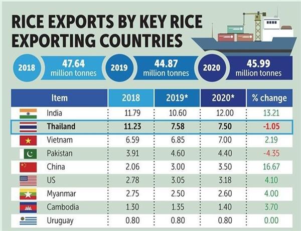 Việt Nam có thể vượt Thái Lan và trở thành nước xuất khẩu gạo lớn thứ 2 thế giới. Ảnh: Bangko