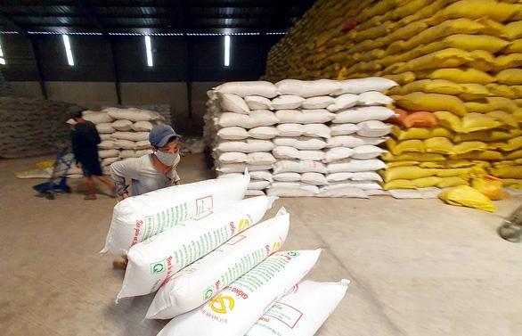 Trung Quốc tăng mua gạo Việt với giá cao hơn các thị trường khác