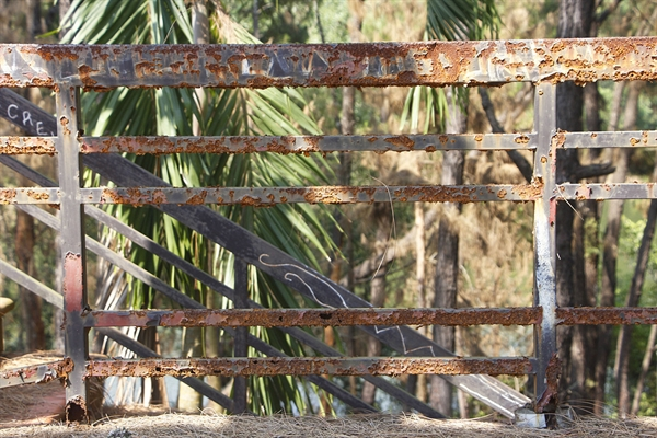Railing across the park have rusted into misuse.