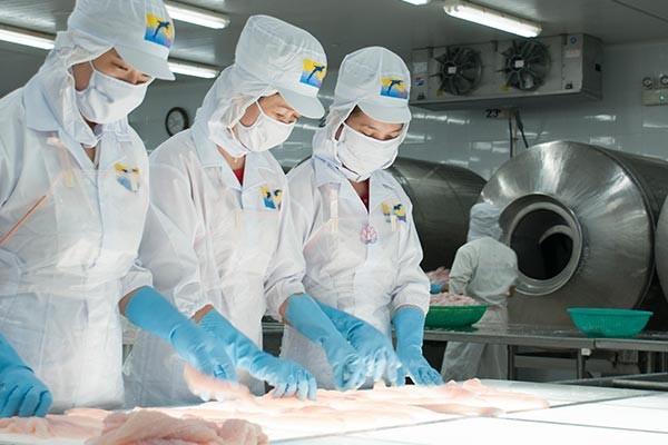 Hùng Vương gặp nhiều khó khăn trong xuất khẩu thuỷ sản. Ảnh: Forbes