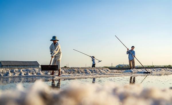 Những diêm dân đã phải lao động rất vất vả để làm muối. Ảnh: Nguyễn Cường