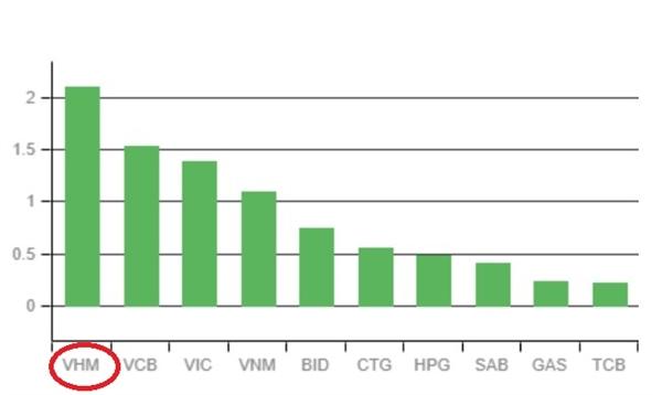 VHM dẫn đầu đoàn tàu VN-Index. Ảnh: VNDirect.