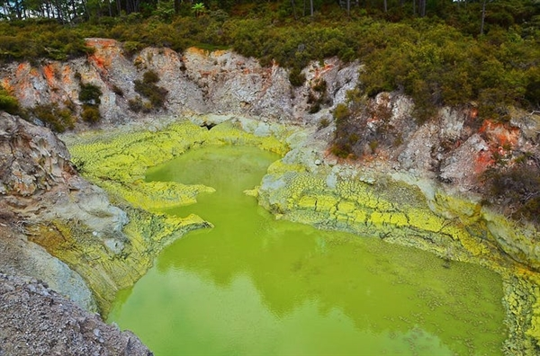 Devil's Bath Pool, New Zealand là hồ bơi của quỷ gây ấn tượng với màu xanh lá do lưu huỳnh lắng đọng tạo thành.