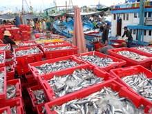 Bộ Nông nghiệp đề ra 7 giải pháp phát triển ngành thủy sản