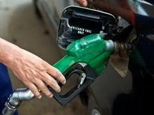 Giá dầu giảm xuống mức thấp nhất trong nửa năm qua