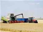 Nông dân trồng ngũ cốc trên thế giới được mùa