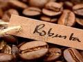 Cà phê có chứng nhận bền vững khó bán
