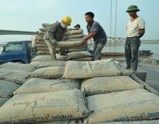 Xi măng xuất khẩu tăng kỉ lục