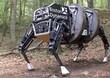 Google chuẩn bị phát triển robot