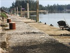 Cảng cá 29 tỷ đồng bị bỏ hoang